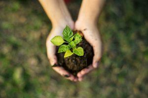 Nachhaltigkeit bei Heliotron